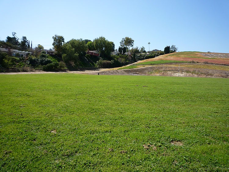 pierce college fields 004