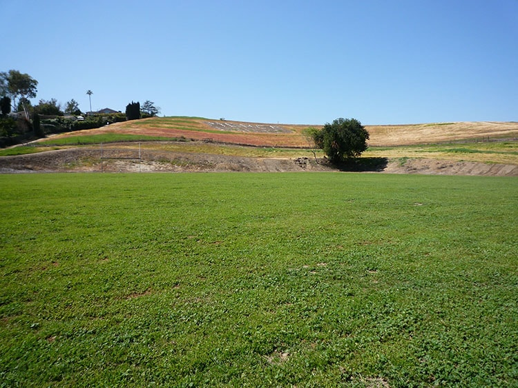 pierce college fields 005