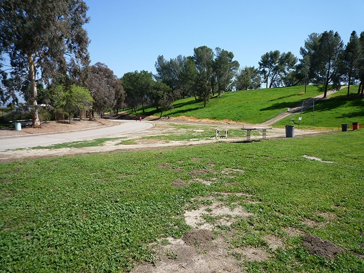 pierce college fields 009