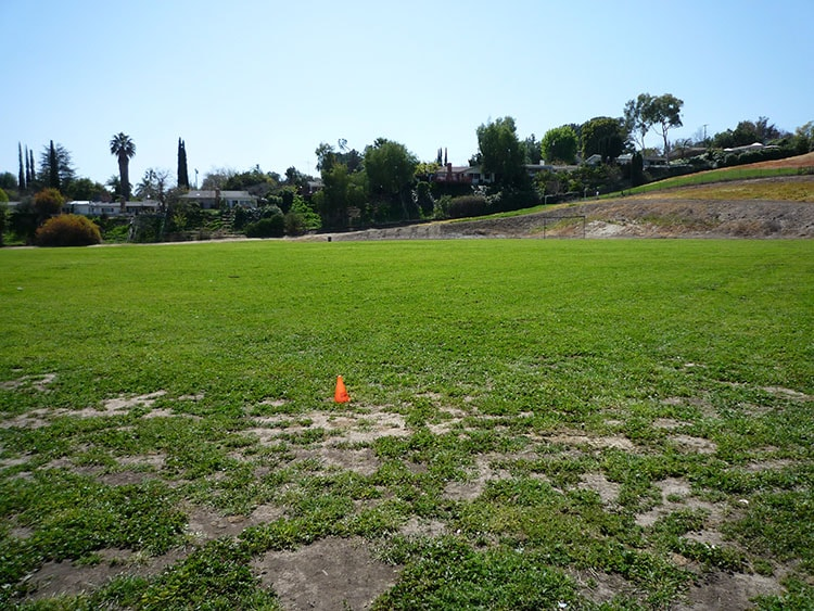 pierce college fields 012