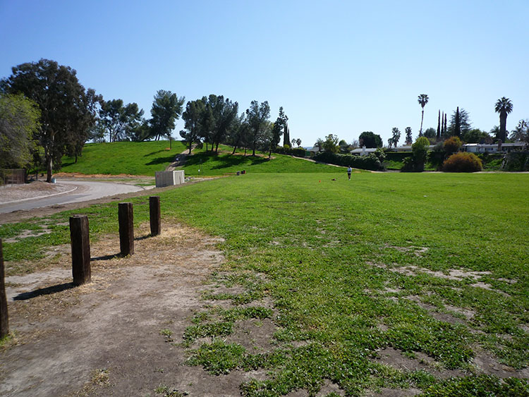 pierce college fields 013