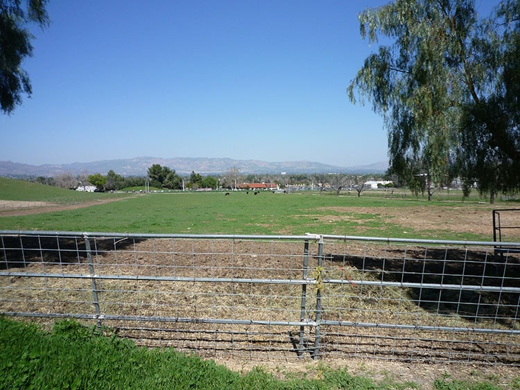 pierce college fields 019