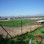 pierce college fields 022
