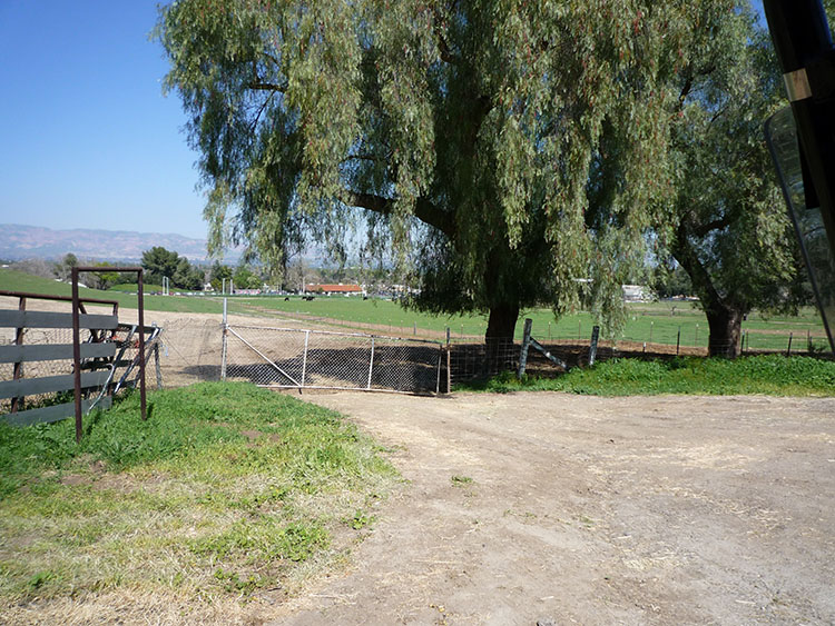 pierce college fields 025