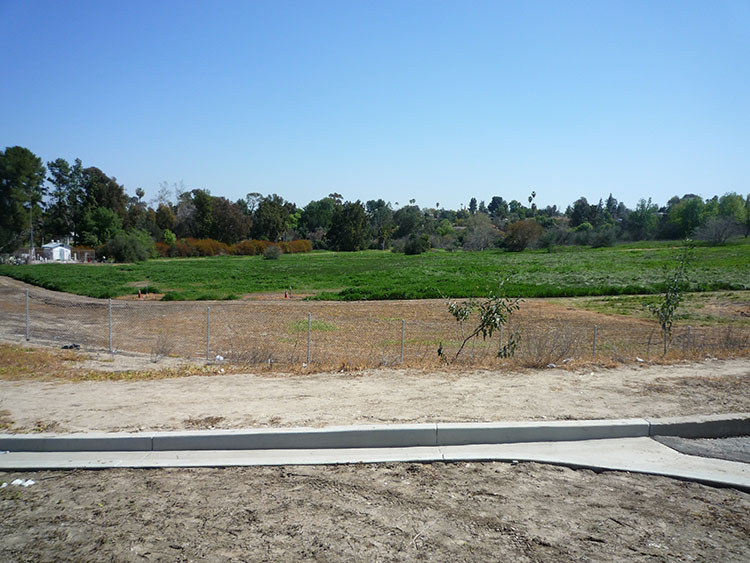 pierce college fields 026
