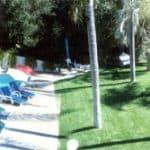 backyard1[1] 2