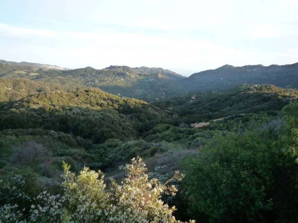 westlake,summitridge,topanga 041 – Copy 2
