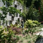 700Kingman-TerraceGarden-Resampled