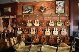 THE+FRETTED+FROG+ACOUSTIC+GUITAR+STORE